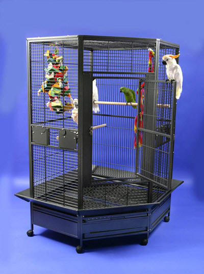 Parrots Escape Jumbo Corner Cage on Click The Small Versions Below To See Large